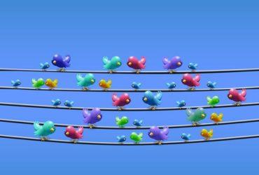 Come farsi seguire su Twitter